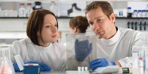 ДНК тест на установление отцовства