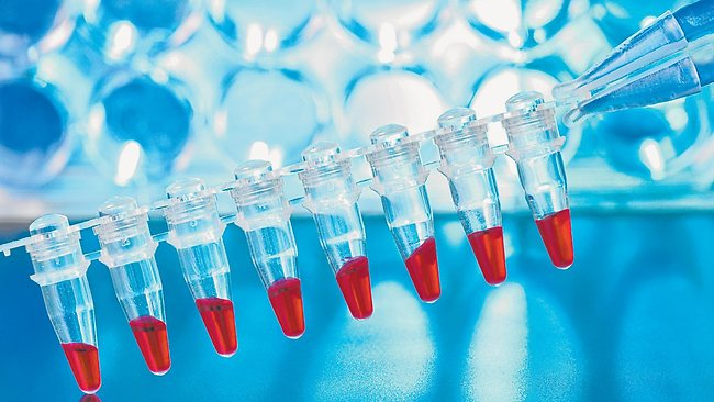 Представление результатов ДНК теста в суде